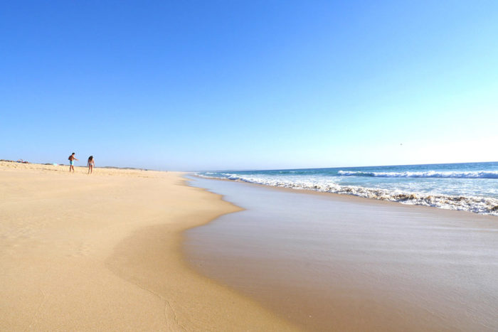 Press review : back on the media that talk about Comporta !